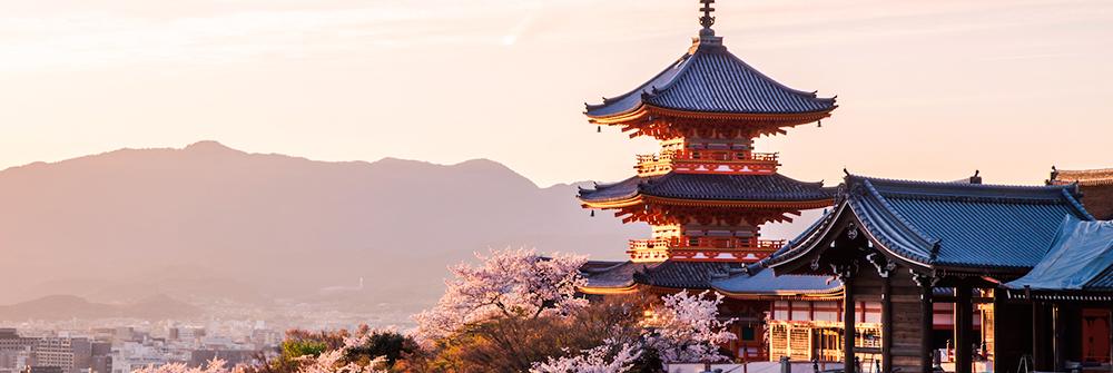 Trek_Package 913 - Kyoto3